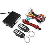 Oyamihin Quality No Key to Enter The Auto Electronic Accessories Anti-Theft Device Central Lock M616-8113 Dart Hawk Alarm - Black