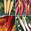 Premier Seeds Direct CAR15 Carrot Rainbow Mix Finest Seeds (Pack of 1500)
