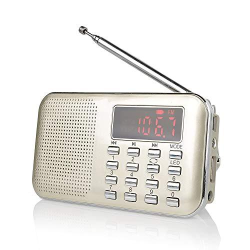 Radioddity RF23 tragbar Radio AM/FM Kurzwellenempfänger MP3 Musik Player, unterstützt Mikro USB TF Karte, mit LCD-Anzeige Wecker Externe Antenne und Chargeable Batterie (Gold)