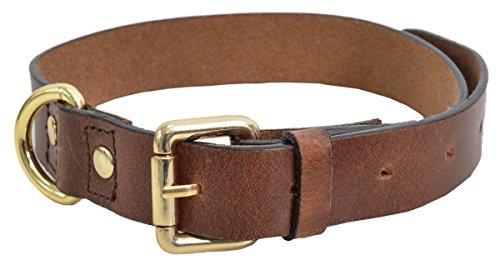 Lederhalsband Hund Hundehalsband Rindsleder Braun 30-35 cm