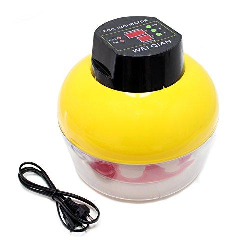 Incubatrice automatica wq-8 con doppio display, rotazione delle uova e regolazione della temperatura