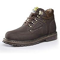 Lingqiqi Bota de Hombre Botines de Trabajo Zapatos de Trabajo de Suela cálida con Parte Superior Redonda Superior de algodón (Convencional Opcional) Invierno (Color : Marron Oscuro, tamaño : 46 EU)