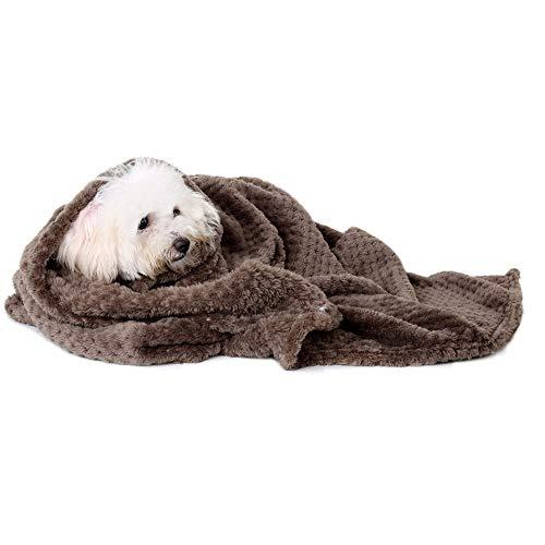 JKRTR Bequem Pad Decke Haustier Katze Matte Hund Warme Bettdecke Reine Farbe Flanelldecke(Kaffee,:70x100cm)