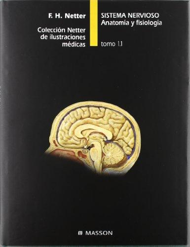 Sistema nervioso. Anatomía y fisiología por F.H. Netter