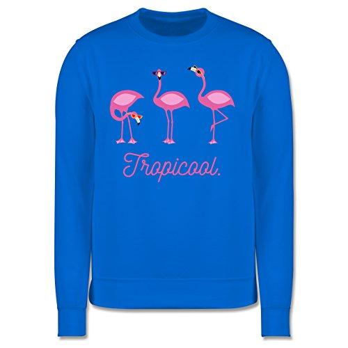 Vögel - Tropicool Flamingo Gang - Herren Premium Pullover Himmelblau