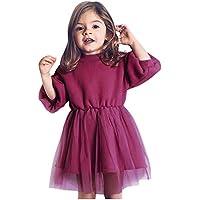 Bebé Vestido de Banquete | Niños pequeños Bebés Niñas Pleuche Paillette Princess Thicken Tulle Dress Outfits 6 Meses - 6 años