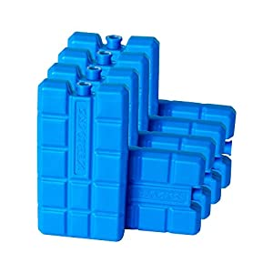 41bjPycxy6L. SS300  - ToCi Ice Packs Each with 200ml   Ice Packs for Cooling Bag or Box, 8