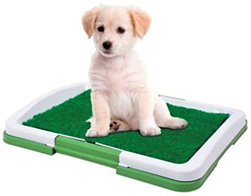 Dominiti Hundetoilette in grün Hundeklo Reisetoilette mit Pad für Hunde Kunstrasen Welpentoilette