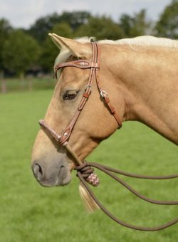 Bosal VB, chestnut