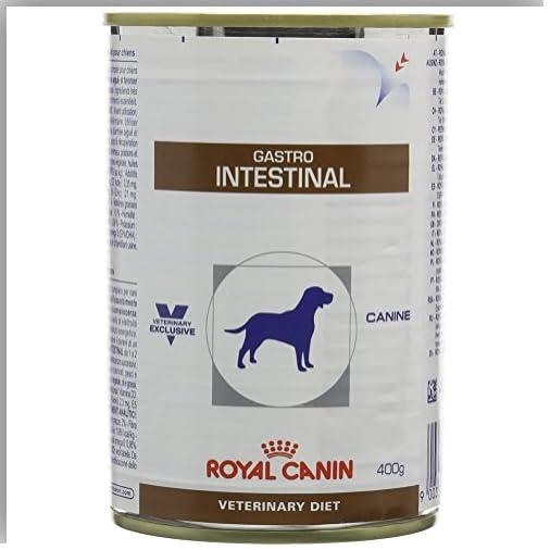 Royal Canin Veterinary Canine