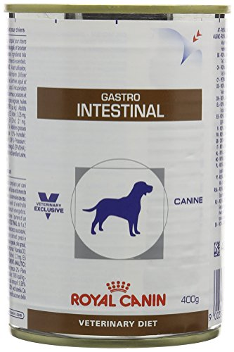 Royal Canin Veterinary Diet Wet Dog Food Canine Gastrointestinal 400 g (Pack of 12)