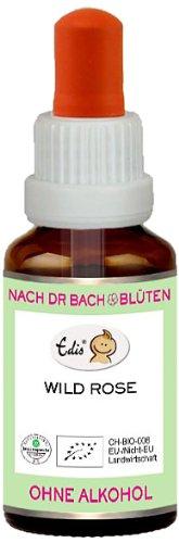 Sunasar Edis Wild Rose alkoholfrei 15ml (Bio Bachblüten), 1er Pack (1 x 15 ml)