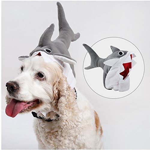 Kostüm Raptor Pet - CHUANG TIANG Haustier Hund Niedlichen Hai Hut, Cartoon Plüsch Kopfbedeckung Phantasie Kopf Mütze Haustier Hut Halloween Haustier Kostüm Cosplay (M)
