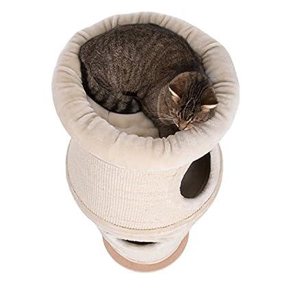 Unusual Cat Scratching Barrel 3