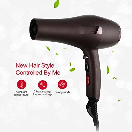 GONGFF Haushalts Haartrockner Heiß und Kalt Wind High Power Haartrockner Haartrockner Salon Haartrockner,Brown