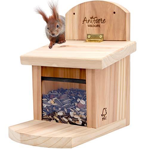AniForte Eichhörnchen Futterhaus inkl. Futter - Wetterfest aus unbehandeltem FSC Holz - Sozial und Umweltgerecht, Eichhörnchenhaus mit Eichhörnchenfutter, Eichhörnchenfutterstation, Futterstation