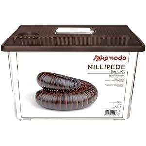 Komodo Set für Tausendfüßler