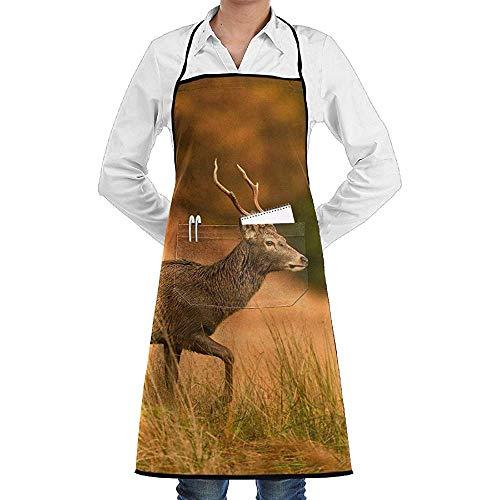 Kostüm Erwachsenen Scottish Für Mann - UQ Galaxy Kochschürze,Scottish Red Deer Graze Schürze Lace Unisex Chef verstellbare Lange vollschwarze Küche Schürzen Lätzchen mit Taschen für BBQ Backen Crafting