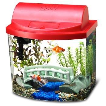 Aqueon Mini Bow 2.5 Gallon Desktop Aquarium Kit