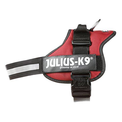 Julius-K9, 162BR-2, K9-Powergeschirr, Größe: 2, bordeaux