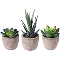 BESTOMZ 3pcs Decorative Faux Succulent Artificial Succulent Fake Simulation Plants with Pots