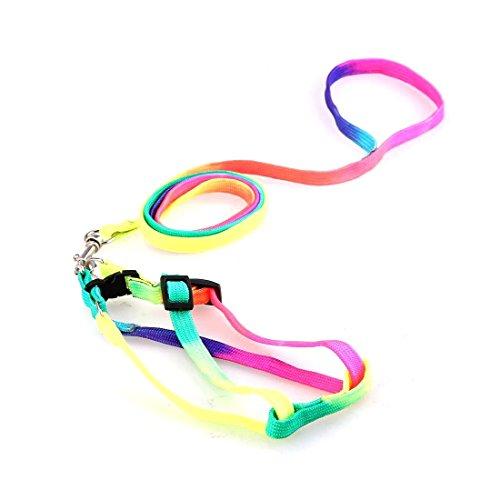 Nylon Kleiner Hund Bunte Hundewelpen Katze Kaninchen Harness Kragen Leine Blei Einstellbare Regenbogen Farbe zuf?llig