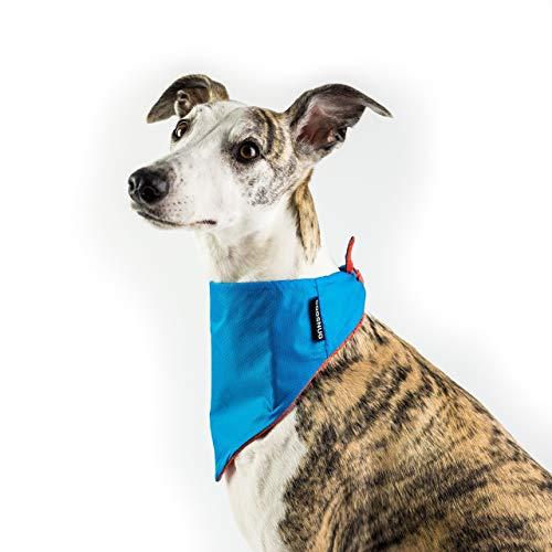 Dogsnug Dog Bandana Cooling Pet Scarf Neckerchief Bib Collar - Medium Reversible Blue Orange Designer