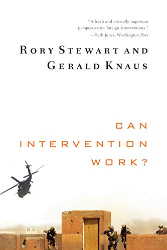 Can Intervention Work? (Norton Global Ethics Series) por Rory Stewart