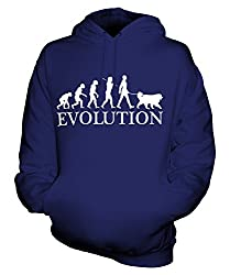 Candymix - Bernese Mountain Dog Evolution Of Man - Unisex Hoodie Mens Ladies Hooded Sweater