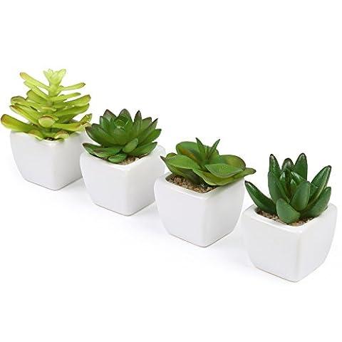 Set von 4Mini Deko Künstliche Sukkulenten/Kunststoff synthetisches Pflanzen mit weißen Keramik Übertopf