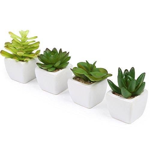 Gebraucht, Künstliche Saftpflanzen in weißen Keramik-Blumentöpfen, gebraucht kaufen  Wird an jeden Ort in Deutschland