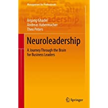 Neuroleadership: A Journey Through the Brain for Business Leaders (Management for Professionals)