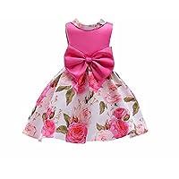 FXFAN Vestido de Niña de Verano Estampado Princesa Falda de Puff ZHANGM (Color : Rosado, Tamaño : 150)