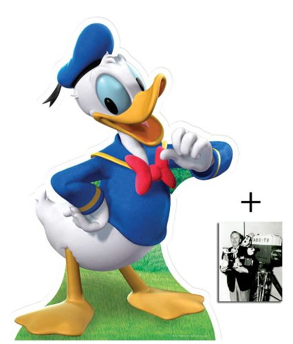 Donald Duck Lebensgrosse Pappfiguren / Stehplatzinhaber / Aufsteller - Enthält 8X10 (25X20Cm) starfoto -