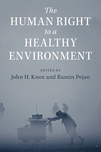 The Human Right to a Healthy Environment (English Edition)