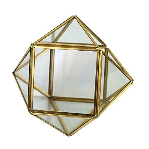 MagiDeal Glasterrarium Geometrisches Glas Sukkulente Pflanzgefäß Haus Dekoration -S -
