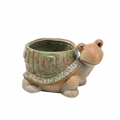 Pot De Fleur Extérieur Intérieur Céramique Design Original Unique tortue poterie