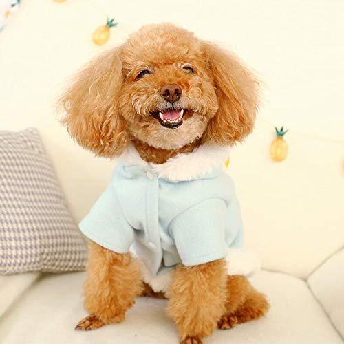 Niedliche Kostüm Für Kaltes Wetter - LKIHAH Hundekleidung Niedliches Kleines Hundekleidungs-Niedlicher Kleiner