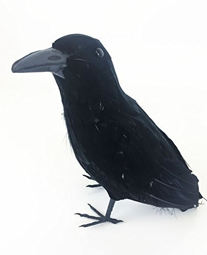 (Raven Maleficent Black Crow Bird Evil Bird Black Fancy Dress Accessory by Bristol Novelties)
