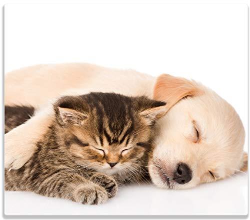 Wallario Herdabdeckplatte/Spritzschutz aus Glas, 1-teilig, 60x52cm, für Ceran- und Induktionsherde, Katze und Hund in Harmonie - Kuschelnde Tiere