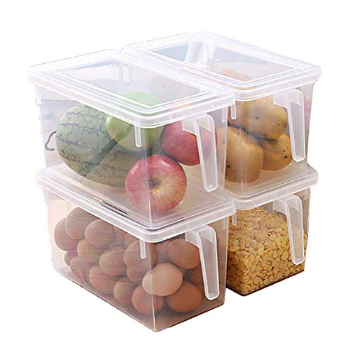 House of Quirk Food Storage Containers Airtight and Reusable Refrigerator Organizer (Set of 4 Multicolor)