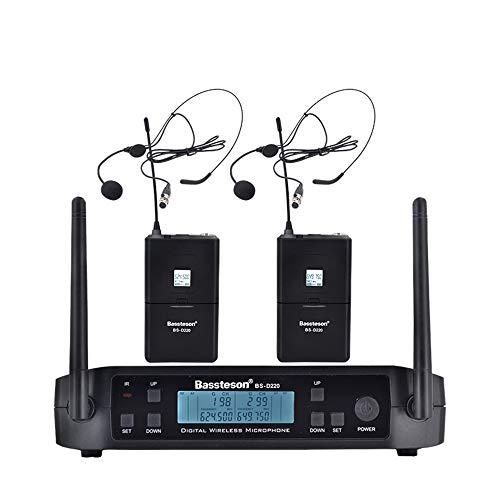 HM2 Funkmikrofon (2-Kanal-2-Funkmikrofon) Festfrequenz-Karaoke-Mikrofon (für Bar Party - Schwarz),A2 12-kanal-handheld-empfänger
