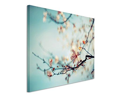 XXL Fotoleinwand 120x80cm Naturfotografie – Kirschblüten vor blauem Himmel auf Leinwand exklusives Wandbild moderne Fotografie für ihre Wand in vielen - Blau Wildnis