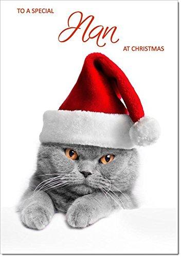 Nan Christmas di gatto con cappello di Babbo Natale–dimensione media