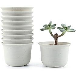 Macetas pequeñas para cactus