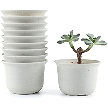 Small Terracotta Plant Pots Pack Of 25 57mm Diameter X