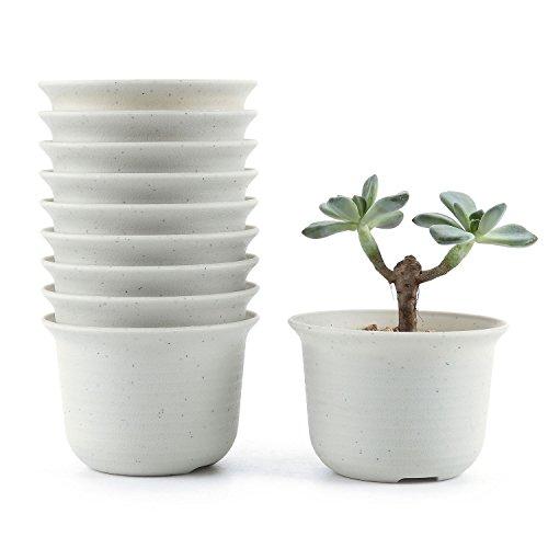 T4U Conjunto de 10 Corto-Ronda Plastico Planta Maceta Suculento Cactus Planta Maceta Planta Contenedor Vivero Maceta Blanco