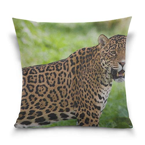Hectwya Kissenbezug Jaguar Wild Cat Predator Decorative Cushion Cover Square Pillowcase, Jaguar Wild Cat Predator Sofa Bed Kissenbezug