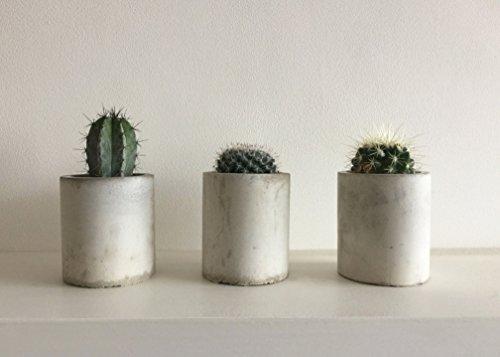 concrete-succulent-cactus-planter-handmade-plant-pot