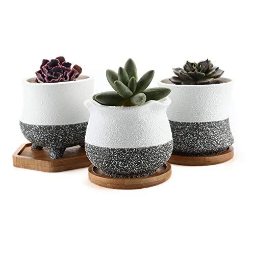 t4u rachel's choice stile coreano ceramica pentole succulente fioriera del cactus del fiore con vassoio di bambù confezione da 3